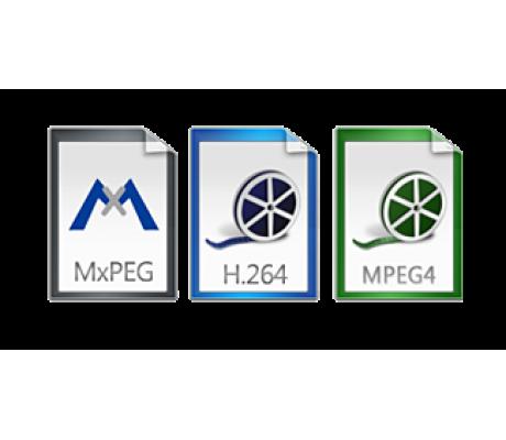 Программное обеспечение видеонаблюдения Macroscop начало поддерживать кодек MxPEG