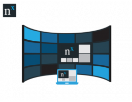 Nx Witness-VideoWall License